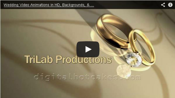 Hd Wedding Video Backgrounds By Digital Hotcakes Vol 1